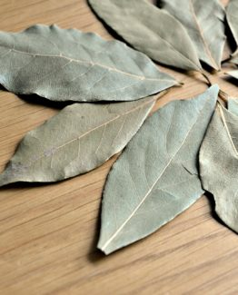 Bay Laurel Leaf